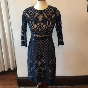 Gabby Skye blue lace dress